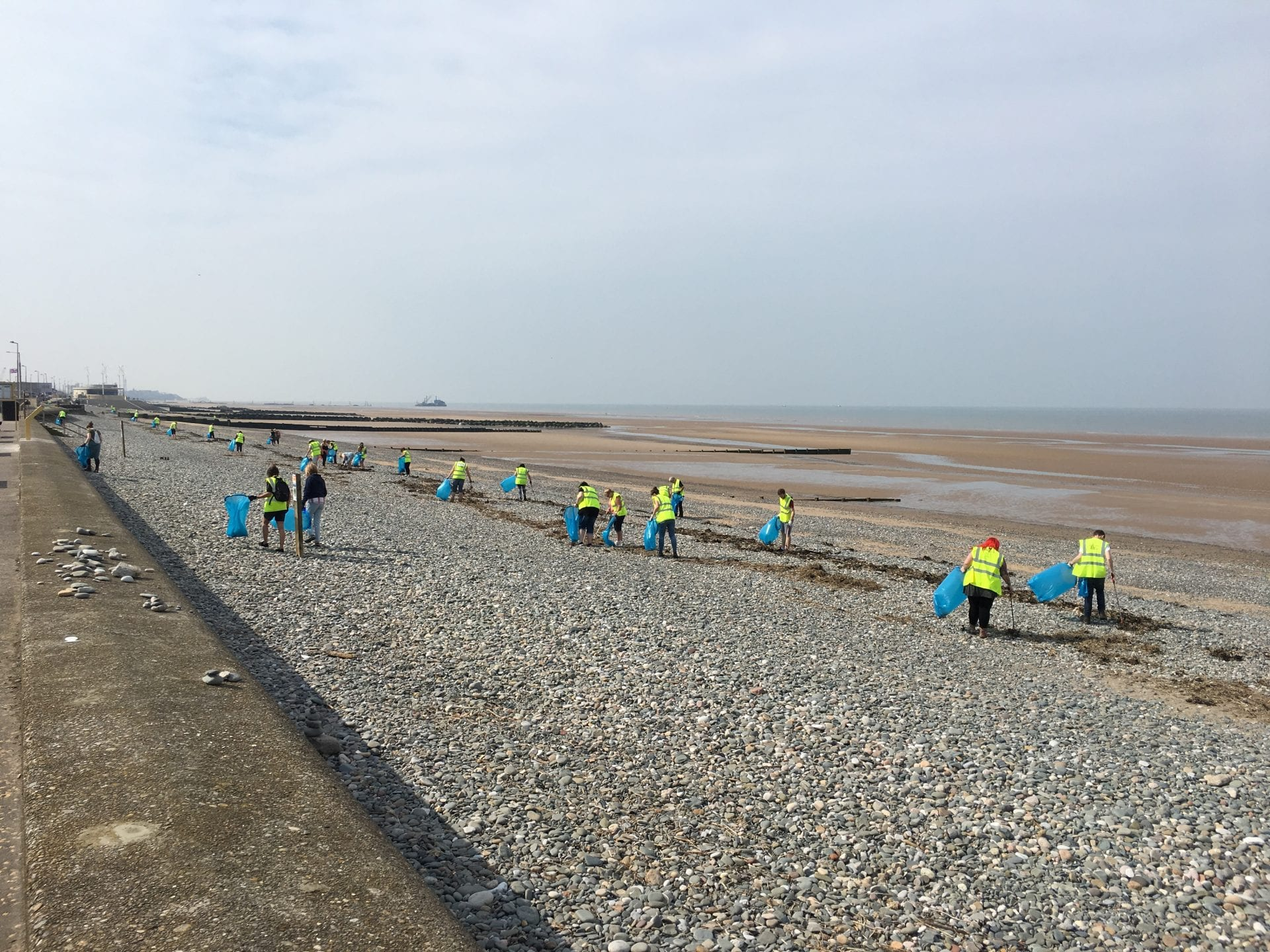 Volunteers at the Annual MCS Beach Clean