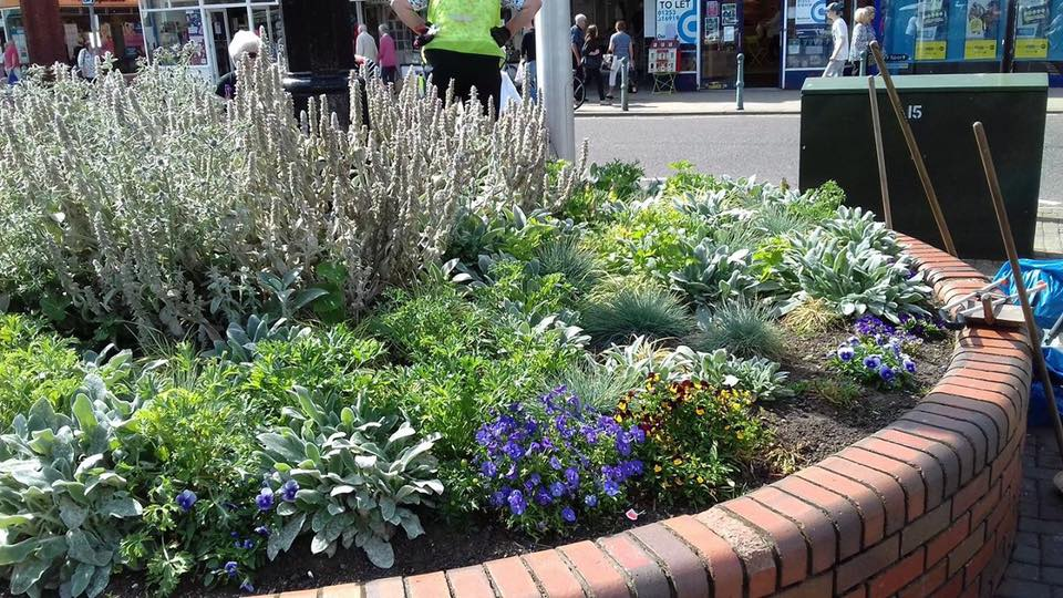 Flower bed at the Rotary clock in Cleveleys. Cleveleys Coastal Community Team updates